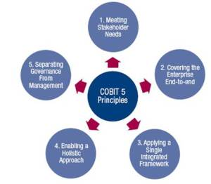 COBIT5 Principles
